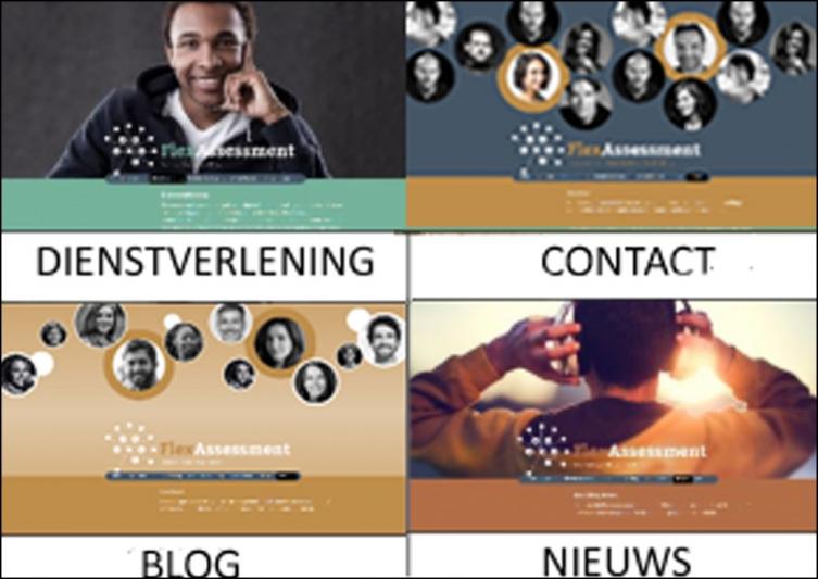 website FlexAssessment in ontwikkeling 2